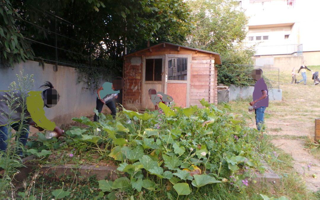Les 3e Uderzo jardinent au Pavement
